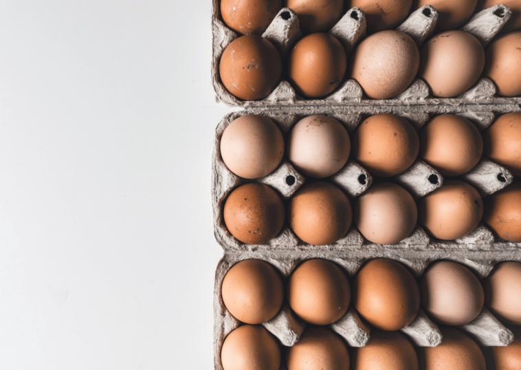 14-day boiled egg diet