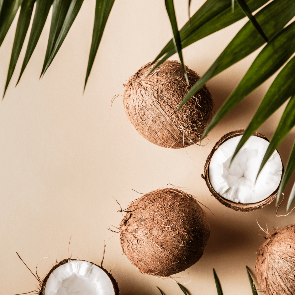 coconut on keto diet
